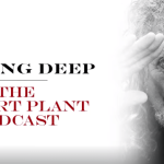 ROBERT PLANT PODCAST/TBL KNEBWORTH NO SLEEPING BAG REQUIRED EVENT/LZ NEWS/TBL ARCHIVE SPECIAL LED ZEP DVD AND ROBERT PLANT STORYTELLERS/THE DAY I WAS THERE BOOK/CODA REDDITCH GIG/ ROCKETMAN FILM/DL DIARY BLOG UPDATE