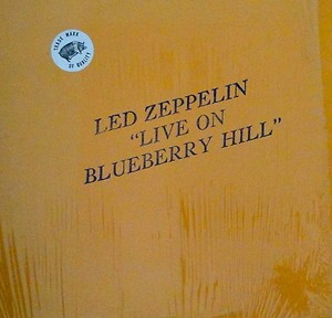 blueberry hill 1